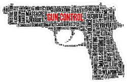 Typographical Gun control Sticker