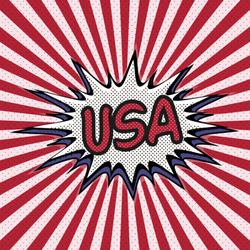 USA Pop Art Sticker