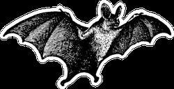Vampire Bat Vintage Illustration Sticker