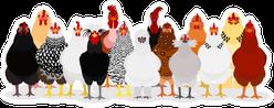 Various Chicken Group Sticker