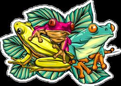 Various Frogs Cartoon Illustration Sticker
