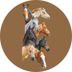 Vertical Postcard With Portraits Of Horses Breeds Brown Sticker
