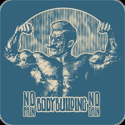 Vintage Bodybuilder No Pain No Gain Sticker