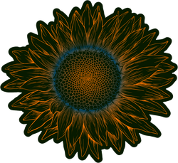 Vintage Engraving Sunflower Sticker
