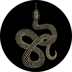 Vintage Line Snake Illustration Sticker