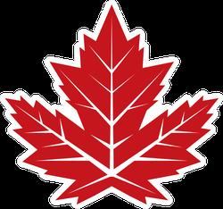 Vintage Looking Maple Leaf Sticker