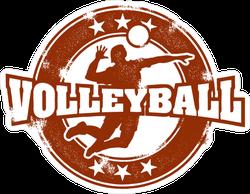 Vintage Style Volleyball Spike Sticker