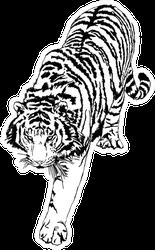 Walking Tiger Illustration Sticker