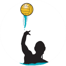 Water Polo Silhouette Illustration Sticker