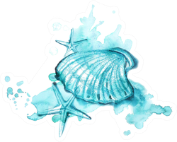 Watercolor And Pastel Hand-drawn Illustration Of Sea Shells Sticker