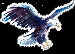 Watercolor Bald Eagle Sticker