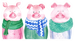 Watercolor Collection Of Pigs In Sweater Sticker