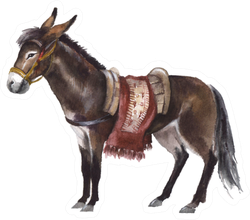 Watercolor Cute Donkey On The White Sticker