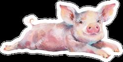 Watercolor Cute Piggy Sticker