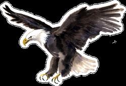 Watercolor Eagle Sticker