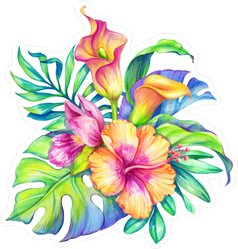 Watercolor Floral Illustration Hibiscus Sticker