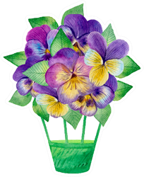 Watercolor Flower Illustration With Pansies Sticker