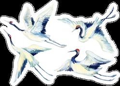 Watercolor Flying Crane Bird Set Hand Painted Sticker