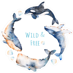 Watercolor Four Whales Sticker