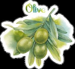 Watercolor Green Olive Sticker