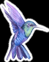 Watercolor Hummingbird  Bird Animal Illustration Sticker
