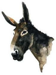 Watercolor Illustration Of A Donkey's Head Sticker