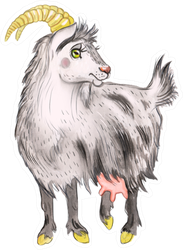 Watercolor Illustration Of A Goat Sticker