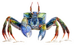 Watercolor Illustration Of A Sea Crab Sticker