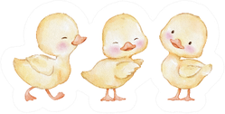 Watercolor Illustration, Set Of Cute Easter Ducklings Sticker