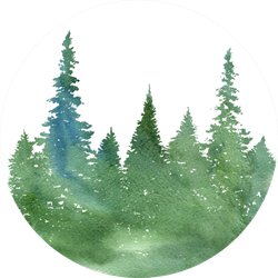 Watercolor Landscape With Fir Trees And Grass Abstract Sticker