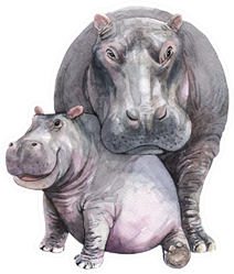 Watercolor Mom And Baby Hippo Sticker