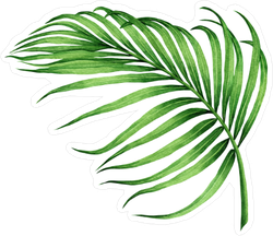 Watercolor Palm Frond Sticker