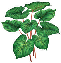 Watercolor Palm Tree Leaves Sticker