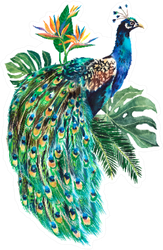 Watercolor Peacock Bird With Tropical Palm Leaves Sticker