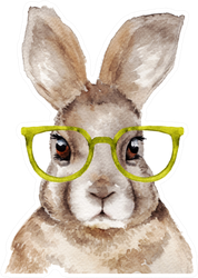 Watercolor Portrait Of Rabbit With Glasses Sticker