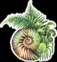 Watercolor Prehistoric Seashell Sticker