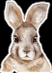Watercolor Rabbit Portrait Sticker