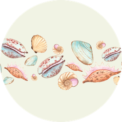 Watercolor Seamless Borders Watercolor Seashell Sticker