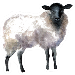 Watercolor Sheep, Hand Drawn Cute Illustration Sticker