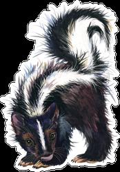 Watercolor Skunk Illustration Sticker