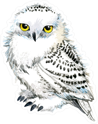 Watercolor Snowy Owl Sticker