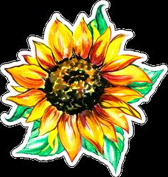Watercolor Sunflower Green Leaves Sticker