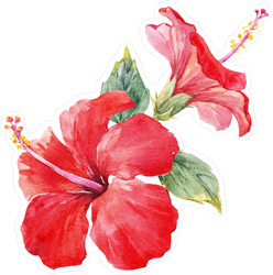 Watercolor Tropical Composition Hibiscus Sticker