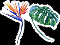 Watercolor Tropical Flower, Jungle Leaf Sticker