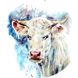 Watercolor White Cow On The Colorful Texture Background Sticker