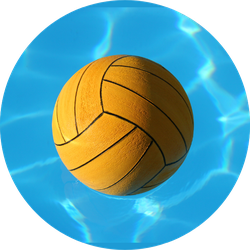Waterpolo Ball In Pool Sticker