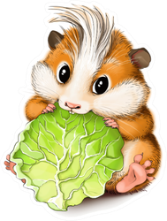 Weggy Hamster Eats A Salad Sticker