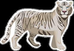 White Bengal Tiger Sticker