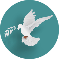 White Dove Holding Branch On Turquoise Sticker
