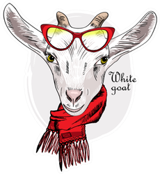 White Goat With Red Glasses And Red Scarf Sticker
